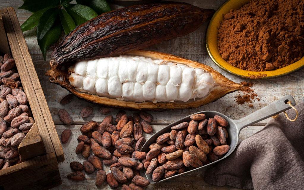 Được làm từ cacao, chocolate là nguyên liệu cho rất nhiều loại bánh kẹo và là món ăn rất được yêu thích bởi hương vị ngọt ngào thơm ngon