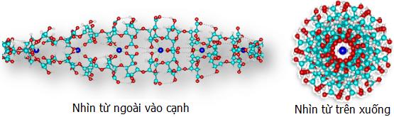 Alginate là một loại phụ gia thực phẩm trong nhóm phụ gia hỗ trợ tạo cấu trúc, có độ nhớt cao. Nó được ứng dụng khá nhiều trong thực phẩm và
