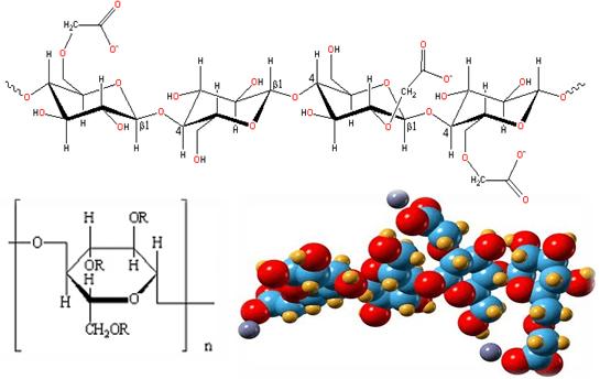 CMC (carboxymethyl cellulose) là phụ gia thực phẩm được sử dụng ngày càng rộng rãi bởi những chức năng quan trọng của nó như làm đặc, ổn