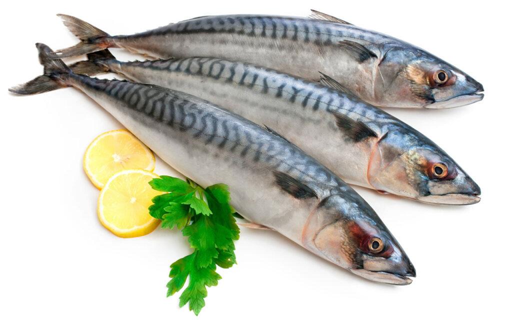 Ai cũng hiểu cá nằm trong nhóm những thực phẩm giàu dinh dưỡng, mang lại nhiều lợi ích cho sức khỏe. Ăn nhiều cá giúp hạ thấp nguy cơ