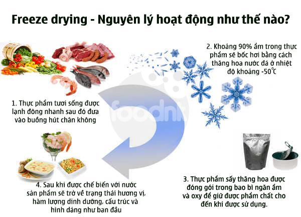 Nguyên lý hoạt động của freeze drying sấy thăng hoa