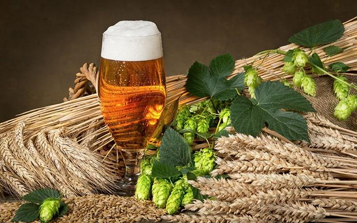 Trong công nghệ sản xuất bia, ngoài những nguyên liệu không thể thiếu được như malt, houblon, nấm men, người ta còn dùng đến một số phụ gia