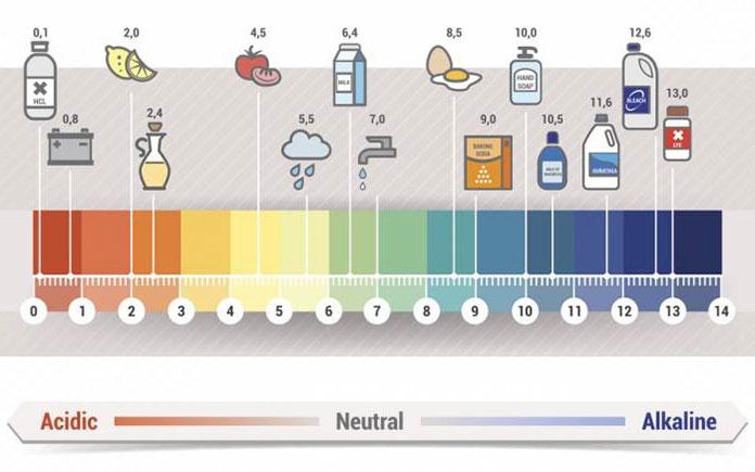Công nghệ thanh trùng trong thực phẩm được nhắc đến trong bài này là phương pháp nhiệt - thanh trùng nhiệt. Mục đích của công nghệ/công đoạn