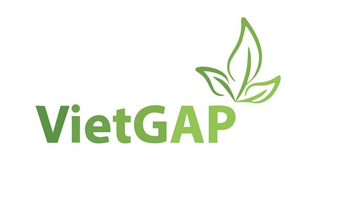 VietGAP là viết tắt của Vietnamese Good Agricultural Practices. Đây là hệ thống các quy định về thực hành sản xuất nông nghiệp tốt cho các
