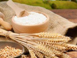 Sản phẩm làm từ bột mì rất đa dạng. Tuy bột mì rất phổ biến nhưng không phải ai cũng phân biệt được các loại bột mì và biết cách sử dụng...