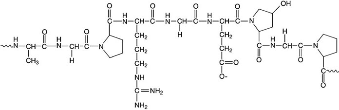 """Gelatin và cấu tạo của nó đã trở nên phổ biến từ những năm 1700, được bắt nguồn từ tiếng Latin là """"gelatus"""", nghĩa là màng hay chất làm đông"""