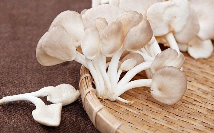 Nấm bào ngư có vị ngọt thanh, làm nên được nhiều món ăn bổ dưỡng. Đặc biệt, là chay hay mặn đều dùng được lại tốt cho sức khỏe.