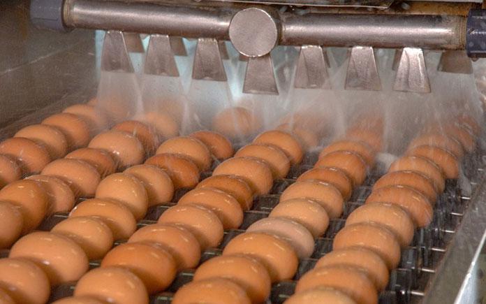 Rửa là công đoạn quan trọng trong xử lý nguyên liệu ở đầu vào quy trình sản xuất. Quá trình này sẽ đảm bảo cho nguyên liệu có độ sạch đạt