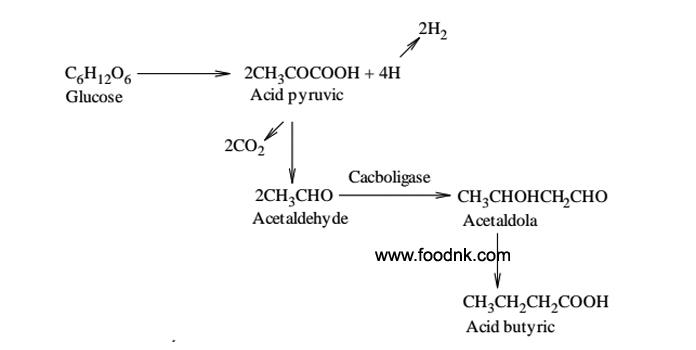 Quá trình lên men butyric thực chất là quá trình phân giải yếm khí đường tạo thành acid Butyric và một số sản phẩm phụ khác. Những acid...
