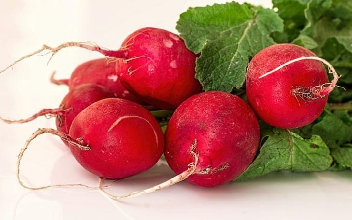 Củ cải đường là thực phẩm chứa nhiều chất dinh dưỡng. Chúng cung cấp nguồn năng lượng thiết yếu cho cơ thể. Tuy nhiên, về đặc tính và công dụng