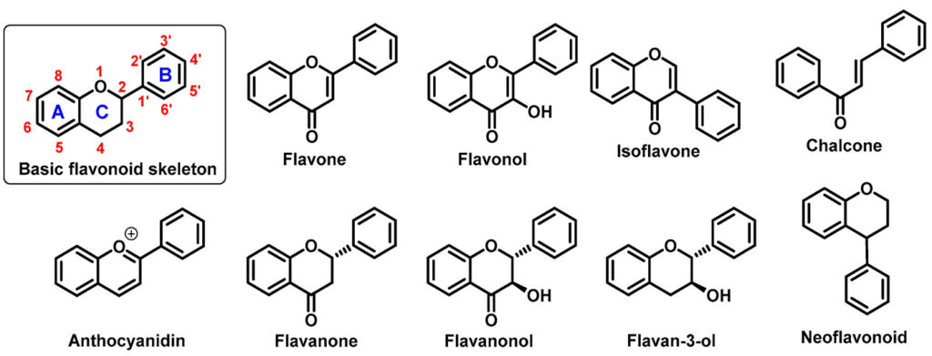 """Nói chung, thuật ngữ """"chất chống oxy hoá tự nhiên"""" để chỉ những hợp chất có trong tự nhiên và có thể chiết xuất chúng từ các mô động và thực"""
