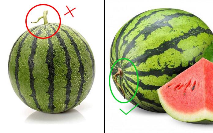 Dưa hấu không chỉ ngon mà còn tốt cho sức khỏe, loại quả này cũng có vỏ ngoài rất cứng và dày. Do đó nếu không biết cách lựa chọn dưa hấu